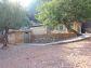Fantastisches Berghaus mit Olivenhain in Sa Figuera in Port de Sóller