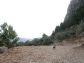 Olivenhain mit fantastischem Fernblick in Sóller