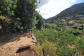 Sehr gepflegter und sonnig gelegener Orangenhain in Sóller