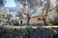 Olivenhain mit Berghäuschen in Es Marroig, Fornalutx